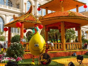 Карнавалы Лазурного Берега и Швейцарии